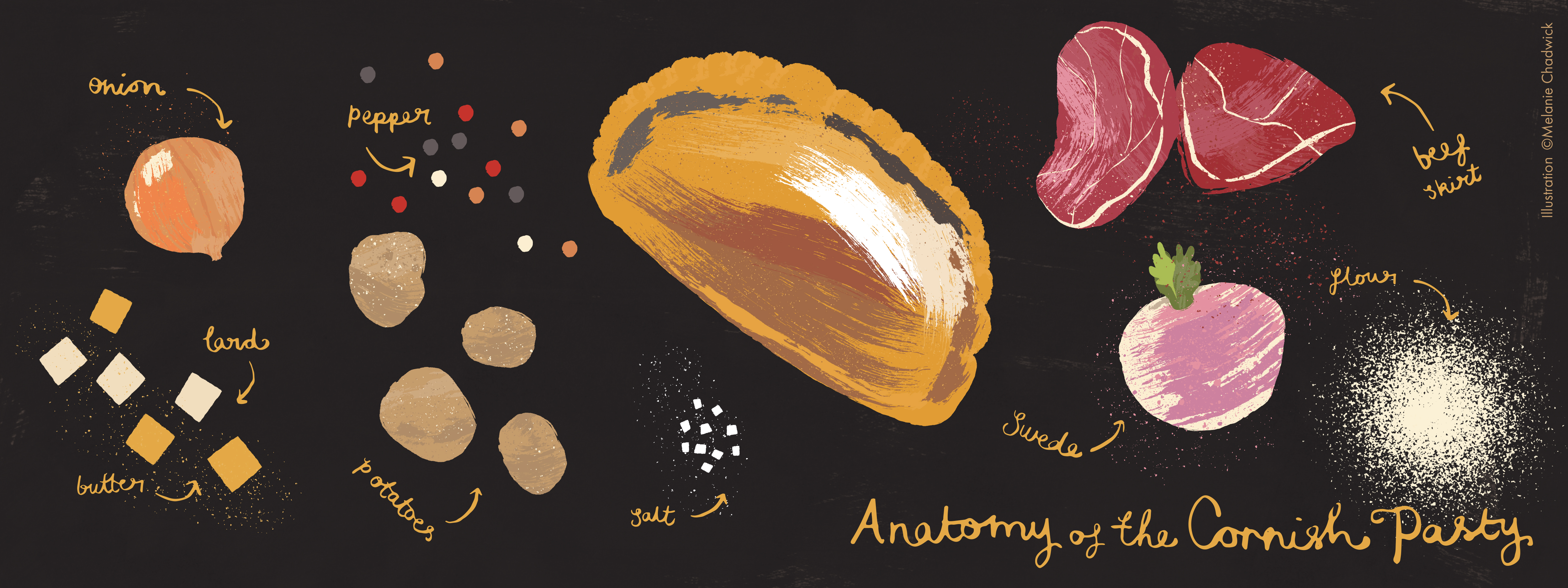 Pasty_anatomy-TDAC